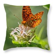 Great Spangled Fritillary On Bee Balm Throw Pillow