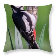 Great Spotted Woodpecker 1  Throw Pillow