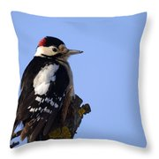 Great Spotted Woodpecker Against Blue Sky Throw Pillow