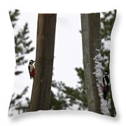Great Spotted Woodpeckers Throw Pillow