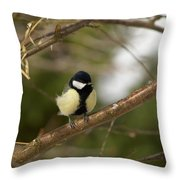 Great Tit Male 2 Throw Pillow