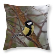 Great Tit Male Throw Pillow