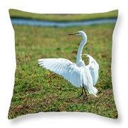 Great White Egret Ahoy Throw Pillow