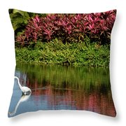 Great White Egret Hunting In A Pond In Mexico With Iguana And Re Throw Pillow