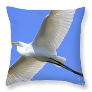 Great White Egret In Flight . 40d6850 Throw Pillow