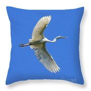 Great White Egret In Flight Throw Pillow