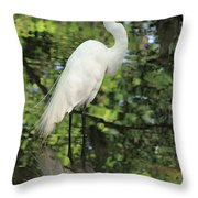 Great White Egret In Spring Throw Pillow