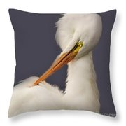 Great White Egret Posing Throw Pillow