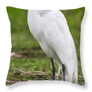 Great White Egret Vertical Throw Pillow