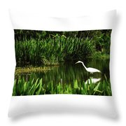 Great White Heron Green Cay Wetlands Throw Pillow