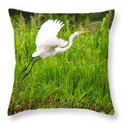 Great White Heron Takeoff Throw Pillow
