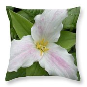 Great White Trillium Throw Pillow