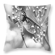 Great Wings  Black And White Dragonfly Throw Pillow