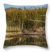 Greatblueheron-nonest-h Throw Pillow