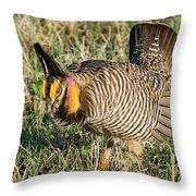 Greater Prairie Chicken Male 9 Throw Pillow