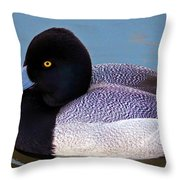 Greater Scaup  Throw Pillow