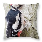 Greater Spotted Woodpecker Throw Pillow