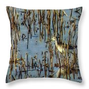 Greater Yellowleg In Reeds Throw Pillow