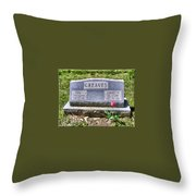 Greaves Throw Pillow