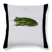 Gree Tree Frog 2016 With Black Border Throw Pillow