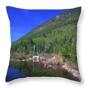 Greeley Pond Throw Pillow