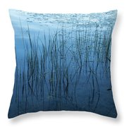 Green And Blue Serenity - Smooth Wetland Morning Throw Pillow