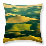 Green And Gold Acres Throw Pillow