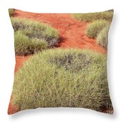 Green On Rusty Red Throw Pillow
