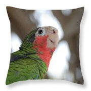 Green And Red Conure With Ruffled Feathers Throw Pillow