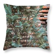 Green And Red - Cypress Branches Over Antique Roman Brick Wall Throw Pillow