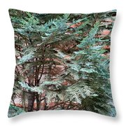 Green And Red - Slender Cypress Branches Over Rough Roman Brick Wall Throw Pillow