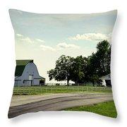 Green And White Farm Throw Pillow