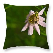 Green Bee Searches For Pollen Throw Pillow