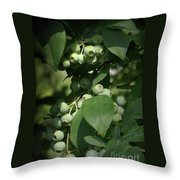 Green Before Blue Throw Pillow