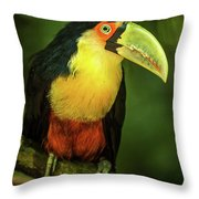 Green-billed Toucan Perched On Branch In Jungle Throw Pillow