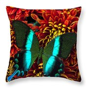 Green Blue Butterfly Throw Pillow by Garry Gay