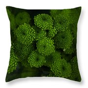 Green Brothers Throw Pillow