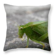 Green Bug Throw Pillow