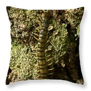 Green Centipede Throw Pillow
