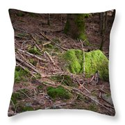 Green Covered Rock Throw Pillow