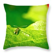 Green Creature On A Broad Leaf. Throw Pillow