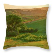 Green Dakota Dream Throw Pillow