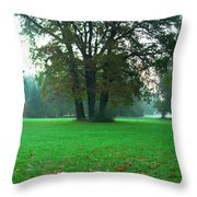 Green Dawn In Autumn Throw Pillow