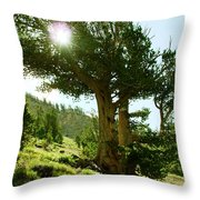 Green Desert Throw Pillow