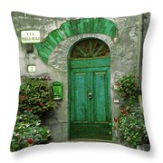 Green Door Throw Pillow