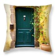 Green Door With Vine Throw Pillow
