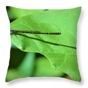 Green Dragon Throw Pillow