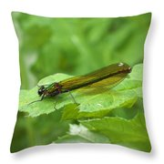 Green Dragonfly On Leaf Throw Pillow