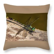 Green Dragonfly Throw Pillow