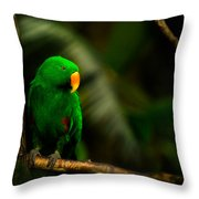 Green Eclectus Parrot Male Throw Pillow